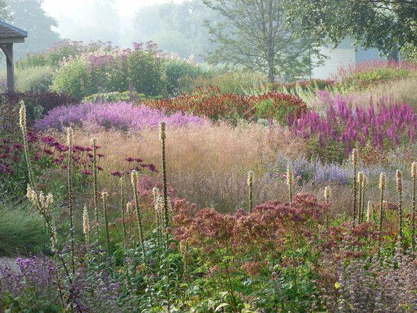 Garden design by Piet Oudolf, Pensthorpe Millennium Garden, Fakenham, Norfolk, UK