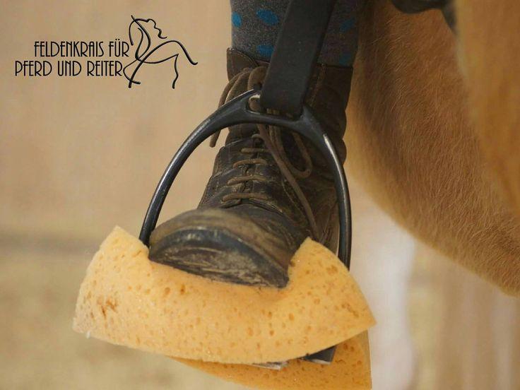 Dank der Feldenkrais-Methode lernst du dein Pferd besser zu verstehen und gleichzeitig feinere Hilfen zu geben – mehr dazu hier!