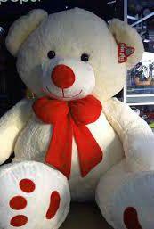 imagenes de osos bonitos para regalar