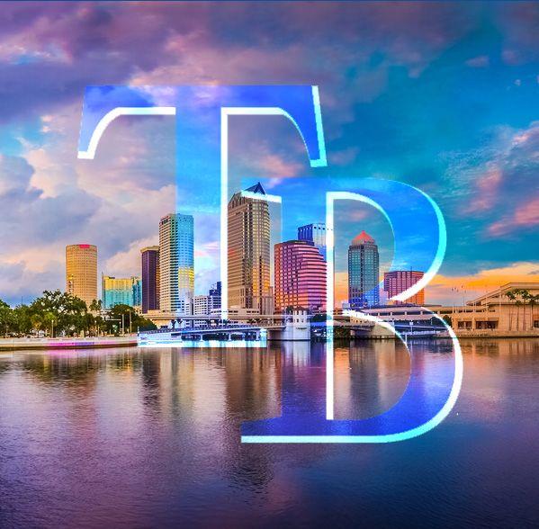 Tampa Bay Rays! #baseball #tampa #florida