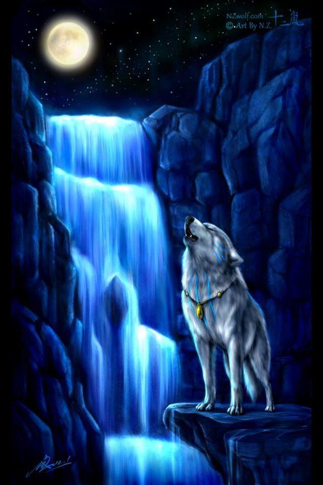 Wolf Artwork, Wolf, Wolf Pictures