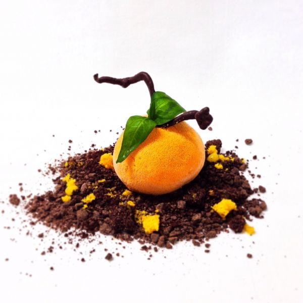 mandarin ice, yuzu, passion fruit & chocolate - The ChefsTalk Project