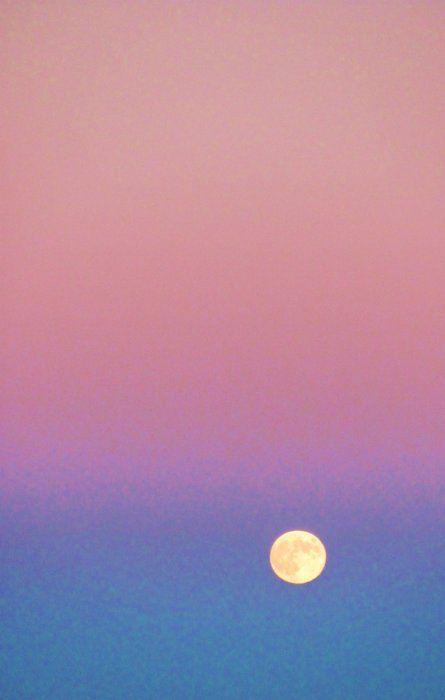 infinite sky: Sunset Sky, Moon, Moon, Colors, Sunrise Sunset, Photography Art, Summer Sunset, Pink Sunset, Sunset Energy