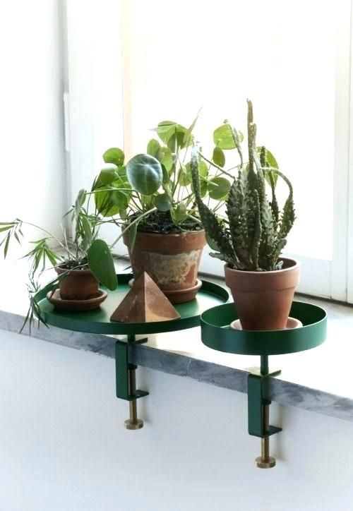 Window Sill Shelves For Plants Shelf Windowsill Plant Stand Fresh In Ideas Colle In 2020 Diy Planters Indoor Plant Stand Interior Plants