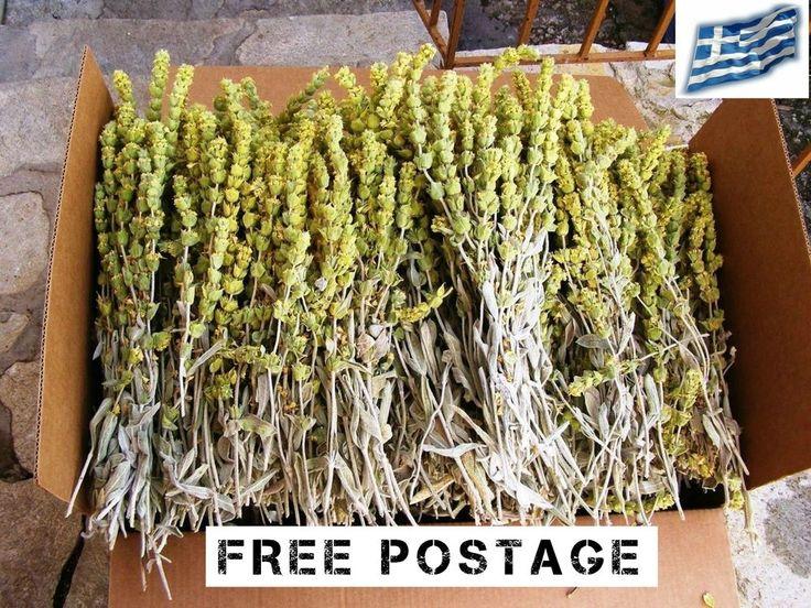 Organic Greek Mountain Tea, Sideritis, Shepherd's Ironwort, Winter Protection #OrganicMountainTea