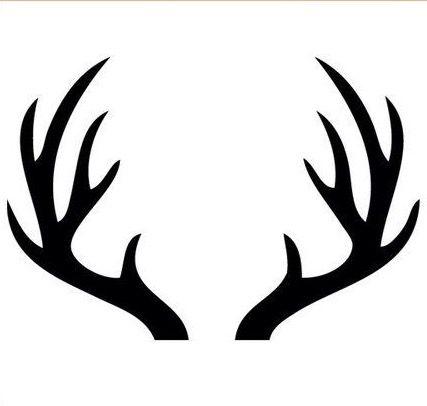 Deer Antlers Antler Drawing Deer Antlers Deer Head