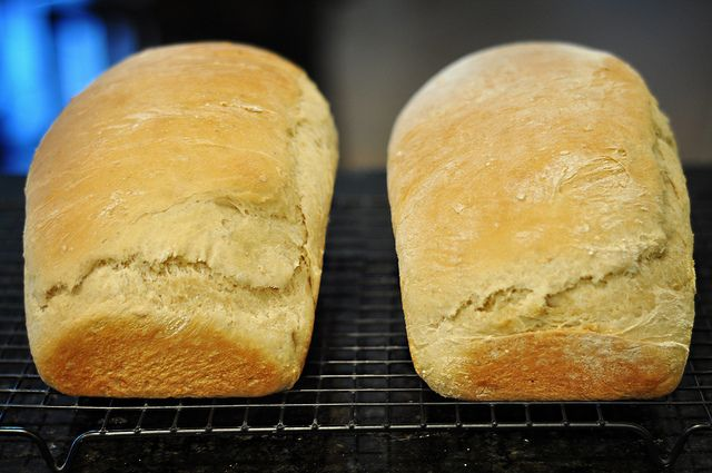 Dairy/Soy free homemade bread! I wonder if I could do it with whole wheat instead of white...