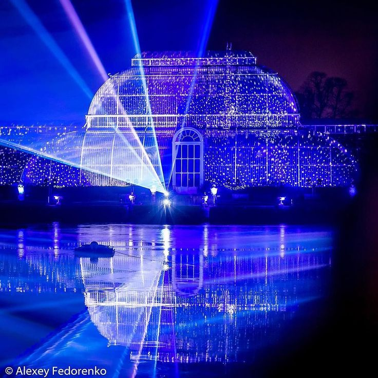 Look - starry palm house of Kew Gardens  #London #LondonDaily #lasershow #Christmas #ChristmasAtKew #KewGardens #RoyalBotanicGardens #UK #GreatBritain #UnitedKingdom #travel #photooftheday #love #lovegreatbritain  #amazing #dailyphoto #shutterstock #landscapephotography #prophoto #professional #wonderlust #instalove #instapic #instasize #instacool #photography