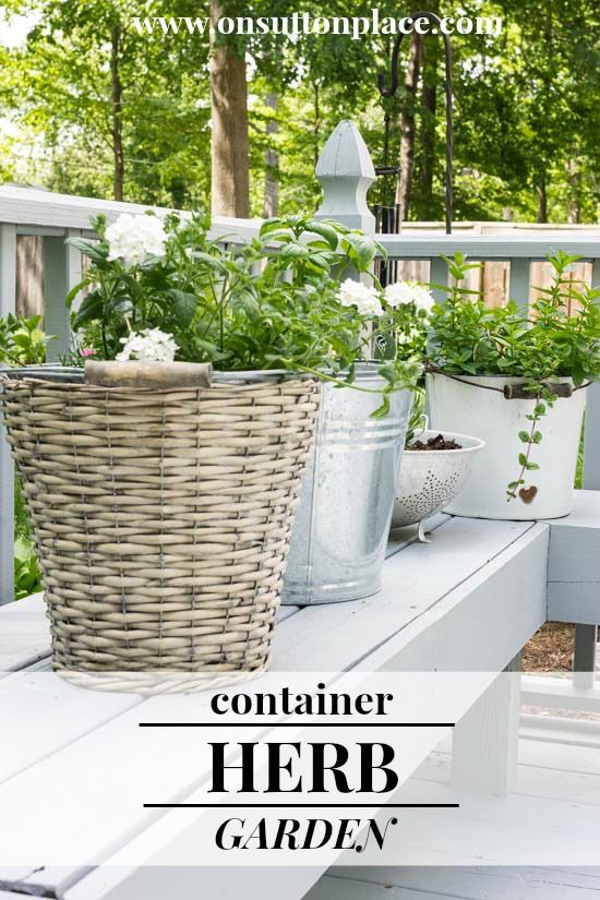 Plant a low maintenance herb garden in vintage containers. Use anything you have on hand from a vintage bucket to an old watering can!