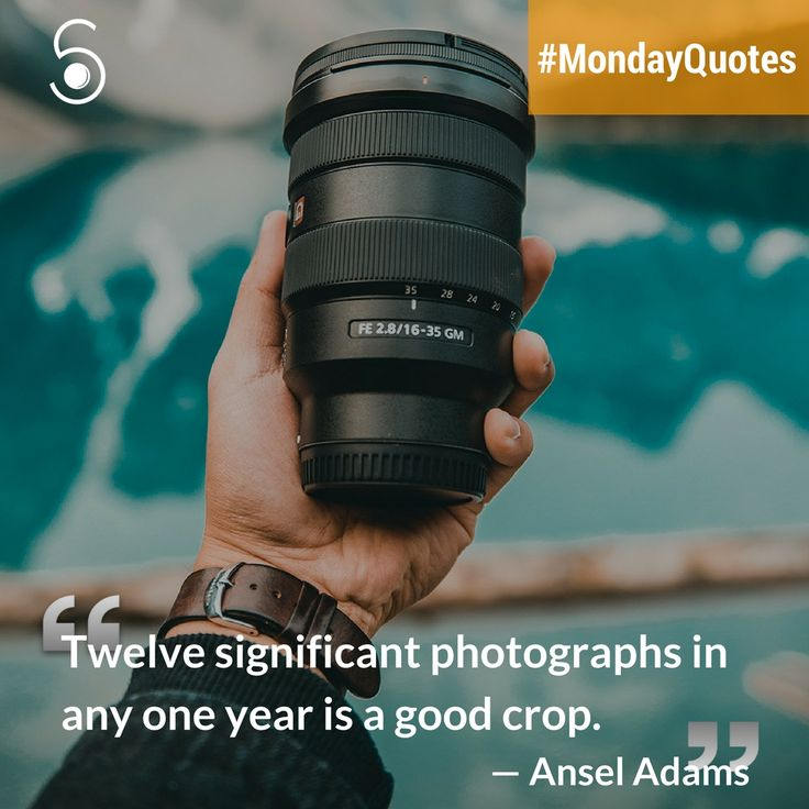❝Twelve significant photographers in any one year is a good crop❞⠀ -Ansel Adams⠀
