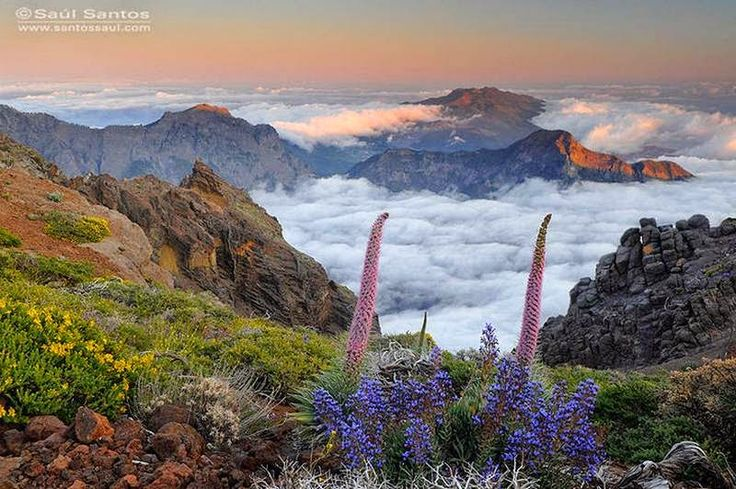 La Caldera de Taburiente - the green heart of La Palma, Canary Islands, Spain