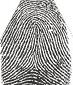 tented arch fingerprint - http://blog.markseltman.com/2013/02/14/palmistry-and-fingerprints/