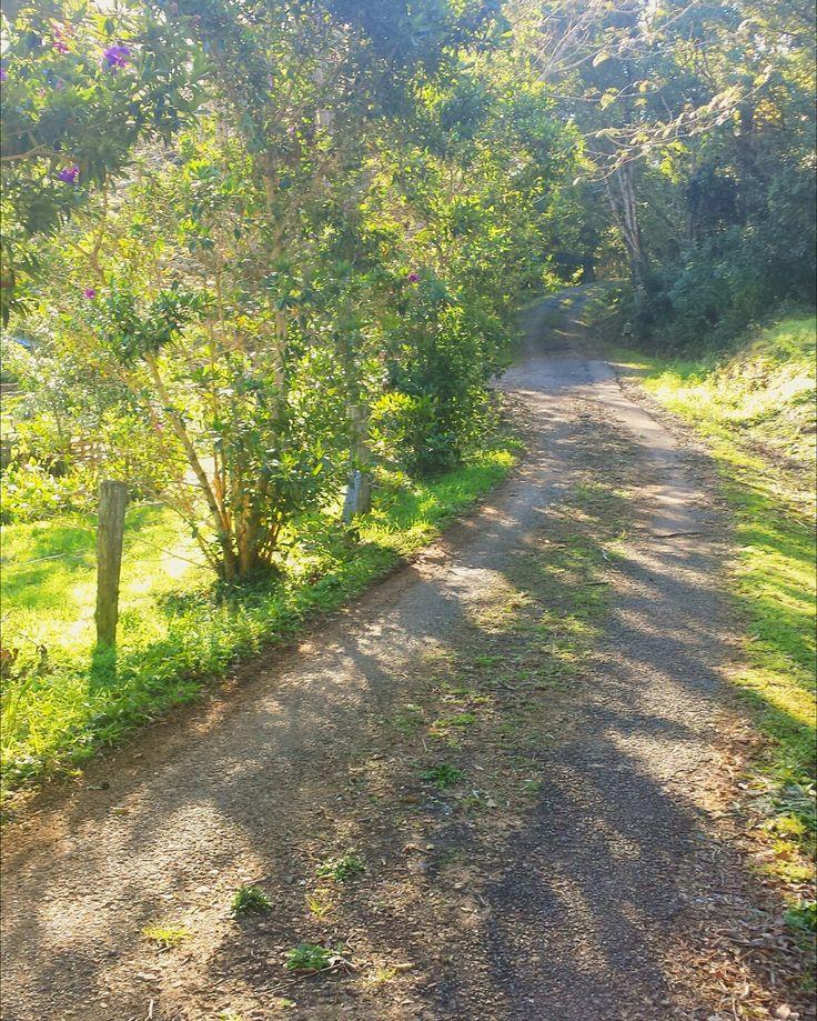 Shadowy Road