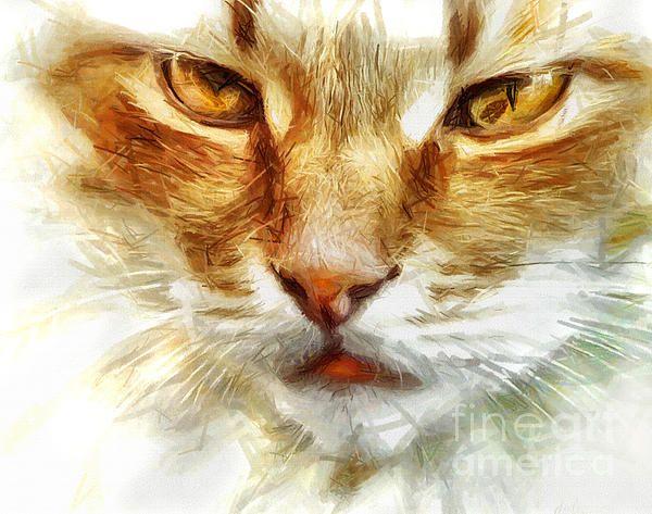 Yellow Cat Portrait - Drawing and Digitally enhanced by Daliana Pacuraru