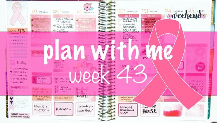 """Plan with me -  Week 43 """"Breast Cancer Awareness"""""""