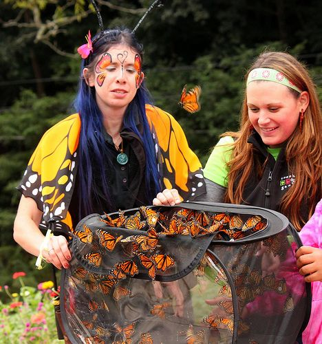 Release Of The Monarch Butterflies This Wonderful Community Program At Creekside Gardens In