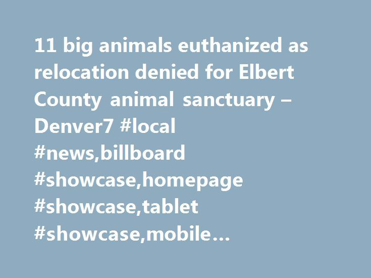 11 big animals euthanized as relocation denied for Elbert County animal sanctuary – Denver7 #local #news,billboard #showcase,homepage #showcase,tablet #showcase,mobile #showcase,news http://alabama.remmont.com/11-big-animals-euthanized-as-relocation-denied-for-elbert-county-animal-sanctuary-denver7-local-newsbillboard-showcasehomepage-showcasetablet-showcasemobile-showcasenews/  # Severe Thunderstorm Warning issued June 7 at 4:18PM MDT expiring June 7 at 4:45PM MDT in effect for: Custer…