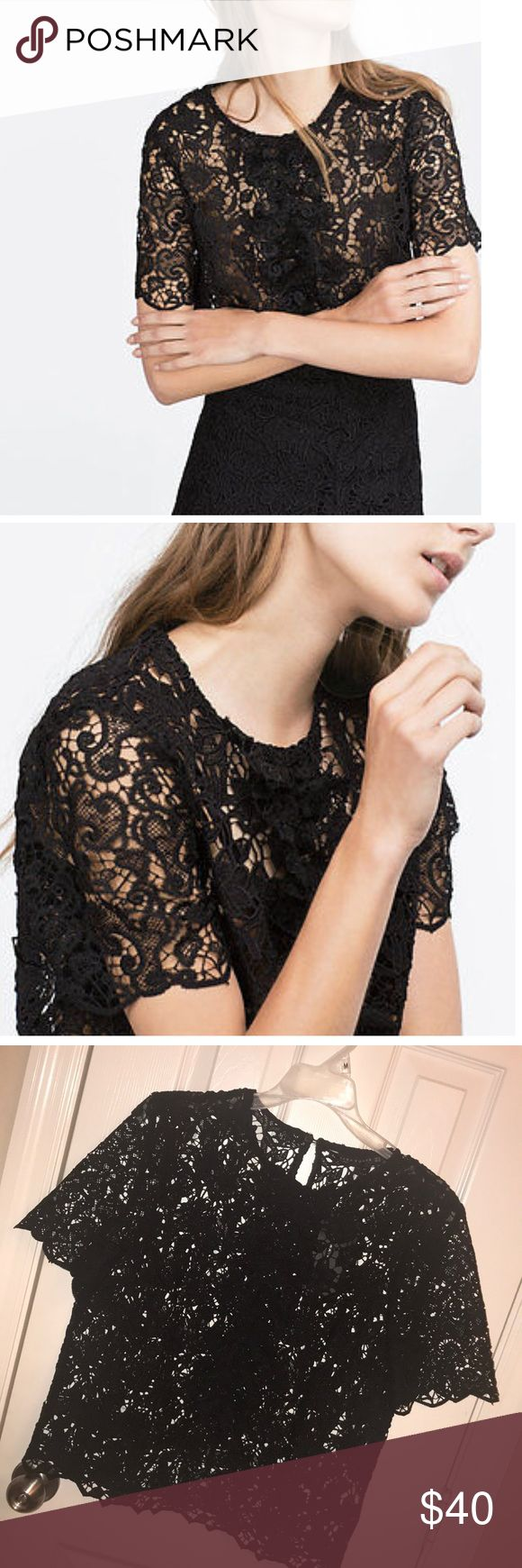 Black Guipure Lace Ruffle Zara Woman Blouse Beautiful black guipure lace ruffle blouse from Zara Woman collection. There is no lining, so an undershirt is necessary depending on how you are styling the blouse. The detailing is spectacular. Wear it with a skirt or pants- very versatile! Zara Tops Blouses