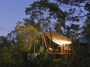 Rose Gums Wilderness Retreat.  Cairns NQ