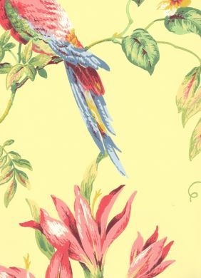 Tropical Bird Yellow Wallpaper - Waverly - This is in the living room and it is beautiful.