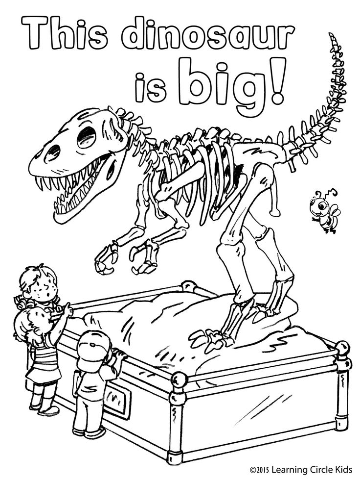The Reader Bee Friends Visit A Natural History Museum At The Museum Coloring Pages