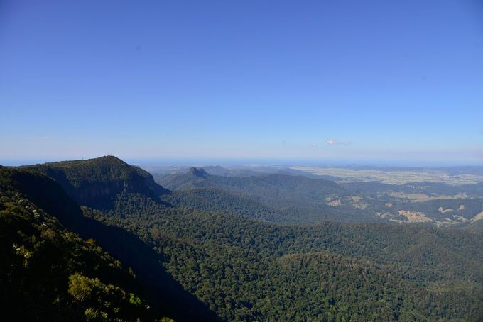 Best of All Lookout Springbrook