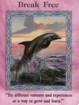 Mermaids and Dolphins Oracle Cards .. Doreen Virtue