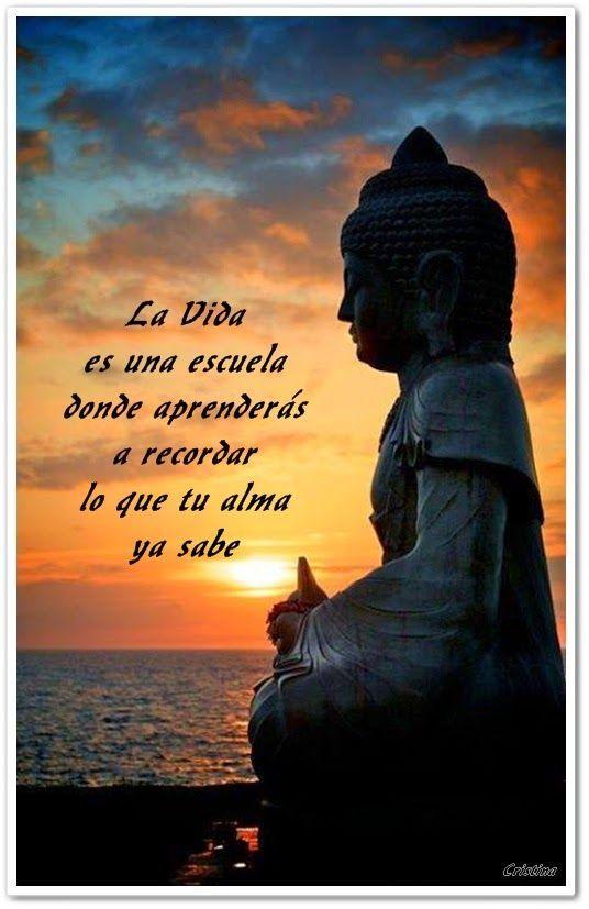 6db4e51d308acc38b8d6946400d252eb--buddha-quote-buddha-bar.jpg (536×827)