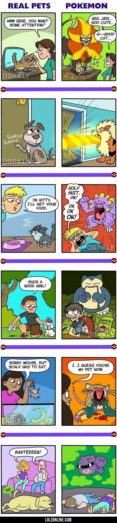 Real Pets Vs Pokemon#funny #lol #lolzonline