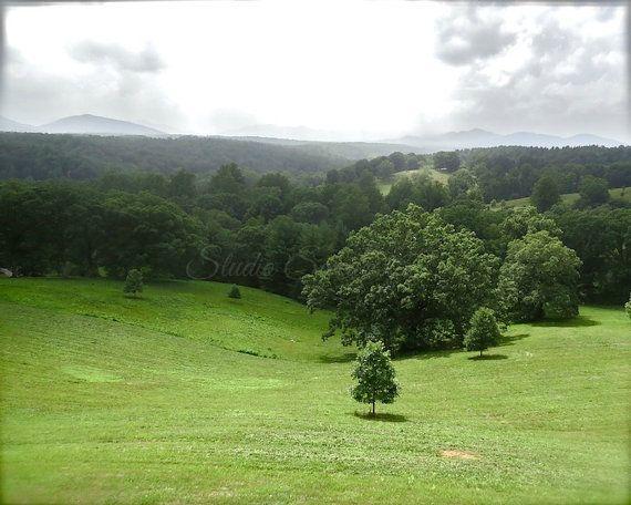 Landscape Photography, Nature Photography, North Carolina, Biltmore Estate