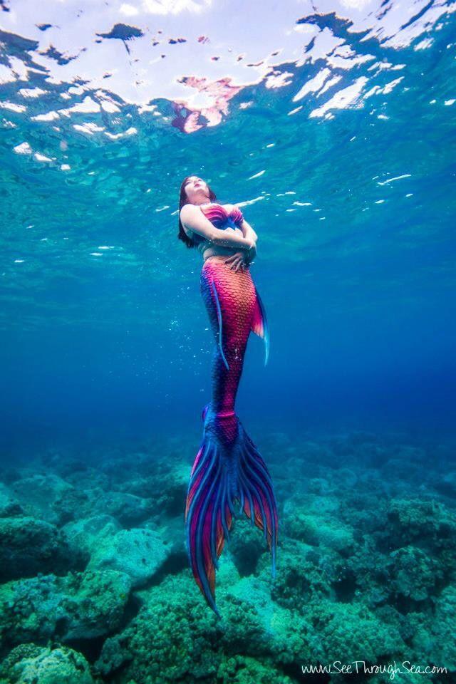 "mermaid-ripple: "" Embraced by the ocean. Mermaid: Mermaid Ripple Photo: See Through Sea (www.seethroughsea.com) Tail & Top: Finfolk Productions Located on the coast of Hawaii """