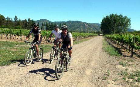Chile's coastal wine regions make for excellent cycling