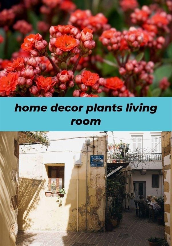 Home Decor Plants Living Room 685 20190108085621 62 Online Catalogs Innovations Sliding