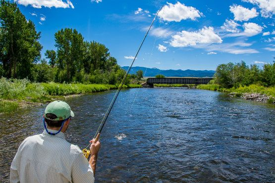Hooked up on a perfect summer afternoon. Here's your mid summer Missoula Fishing Report--by one of Missoula's BEST fishing Guides--Tony Reinhardt (and he's not a bad writer/photographer either!)  http://www.makeitmissoula.com/2014/07/mid-summer-missoula-fishing-report/