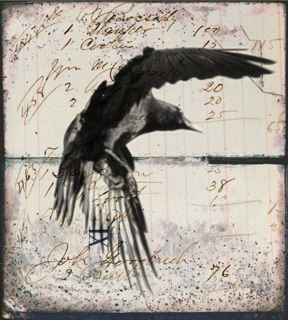 Raven Crow Artwork