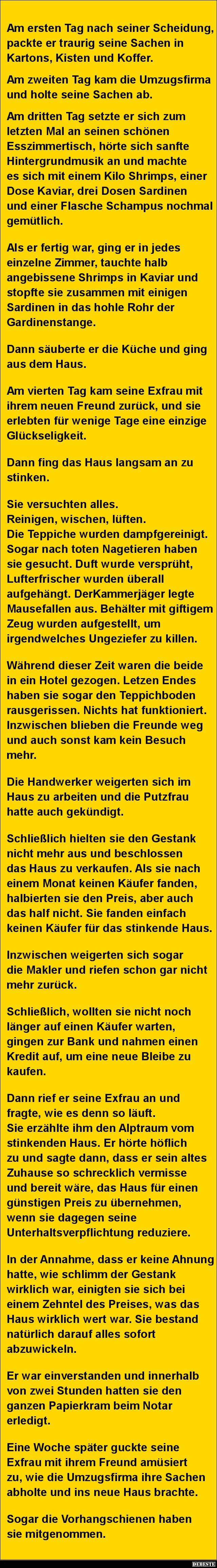 Am ersten Tag nach seiner Scheidung.. | DEBESTE.de, Lustige Bilder, Sprüche…