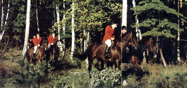 Прогулка на лошадях - один из видов спортивной тренировки