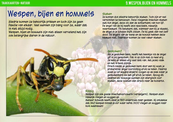 Leuke onderwerpen om over te lezen.Taakkaarten.nl - Natuurkaarten