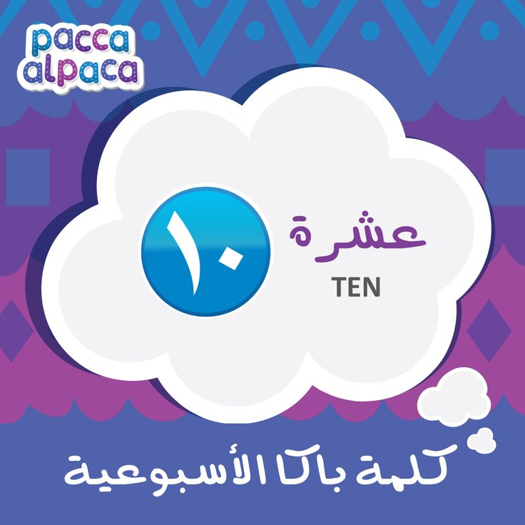 This week Pacca learns how to say Ten in Arabic!