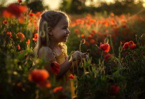 В сердце маков, девочка, цветы, солнце, Лилия Немыкина