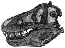 Tyrannosaurus - Wikipedia, the free encyclopedia