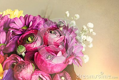 Bouquet Of Flowers. Postcard Romantic Background. Macro - Download From Over 47…