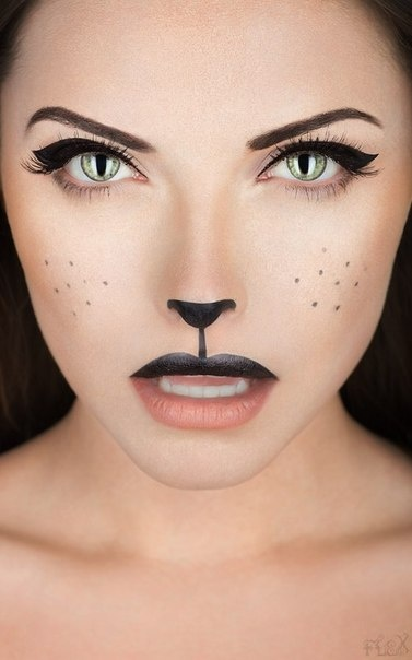 Awesome Cat Makeup-CAT Team with US Solutions Group, Inc.  You should use this for Halloween.