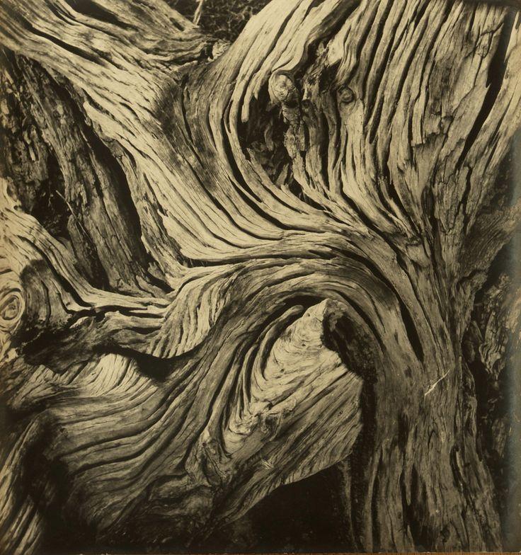 MARCEL GIRÓ (1913-2011), Sem título, c. 1950. (Galeria Bergamin)