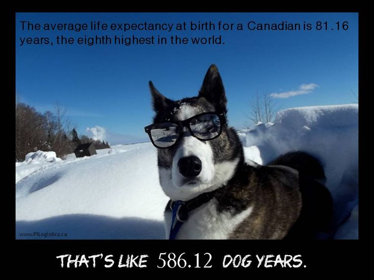 Not only is Canada Cool but we live really long....must be the fresh air
