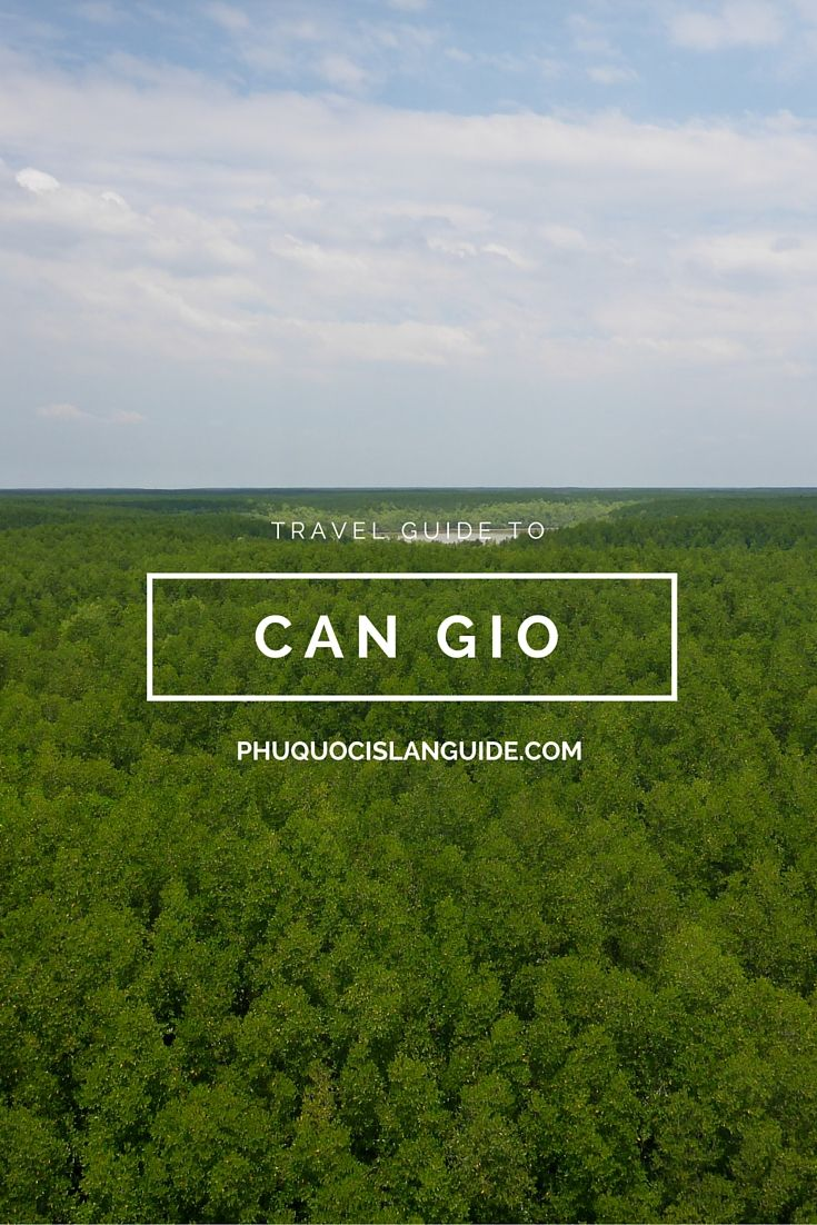 Can Gio - an exhaustive guide to Saigon's famed Monkey Island district, an area recognized by UNESCO  #cangio #cangioisland #monkeyisland #saigon #mangrove #unesco
