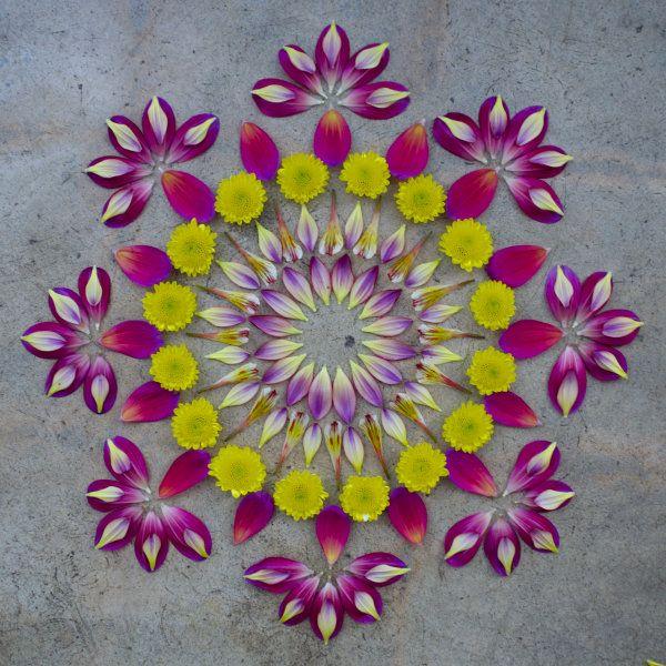 Flower Mandala by Kathy Klein