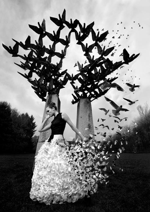 Morphia's Waltz by Ivaylo Petrov: Art Stuff, Art Mi Passion, Benita Beautiful, Artsy, Image, Farts Work, Birds, Black, Artmi Passion