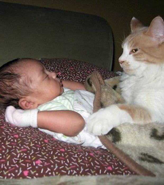 """""""Ahora toca una siestecita""""."""