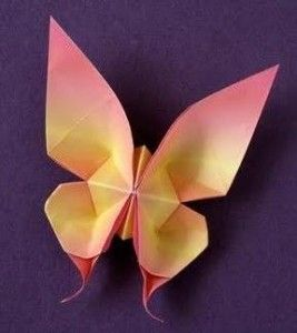 Animal   Origami Swallow Tail Butterfly